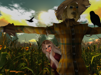 Helping the scarecrow