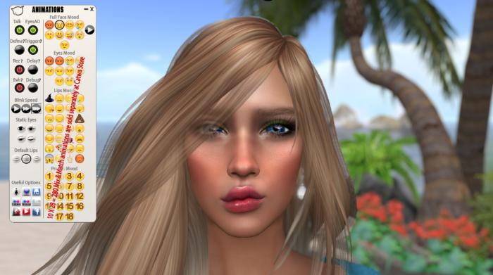 catwa-anims-hud-update